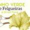 VINHO VERDE E STREET FOOD EM FELGUEIRAS