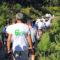 """Caminhada solidária """"Terras de Felgueiras – Vinho Verde"""" com adesão extraordinária"""